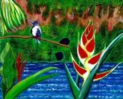 tableau paysages colibri fleur fleuve guyane : Fable tropicale