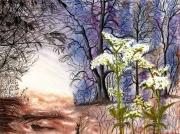 tableau paysages lumiere ombres blanc arbres : Ultimes lueurs du jour