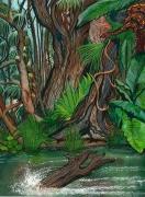 tableau paysages amazonie fleuve preservation danger : Amazonie Bolivienne