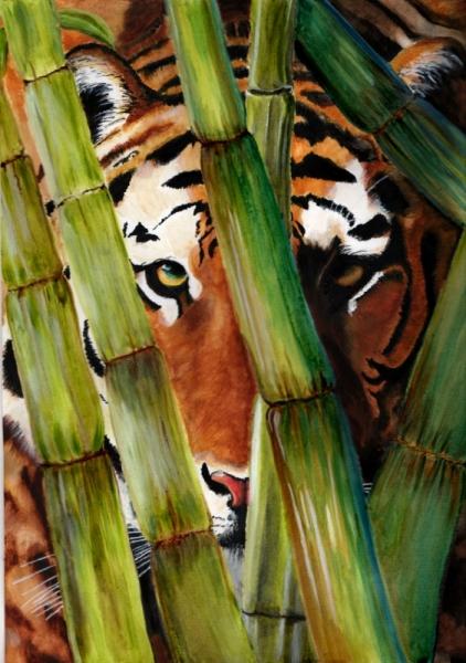 TABLEAU PEINTURE tigre Indonésie sauvegarde forêt Animaux Aquarelle  - Le tigre de Sumatra