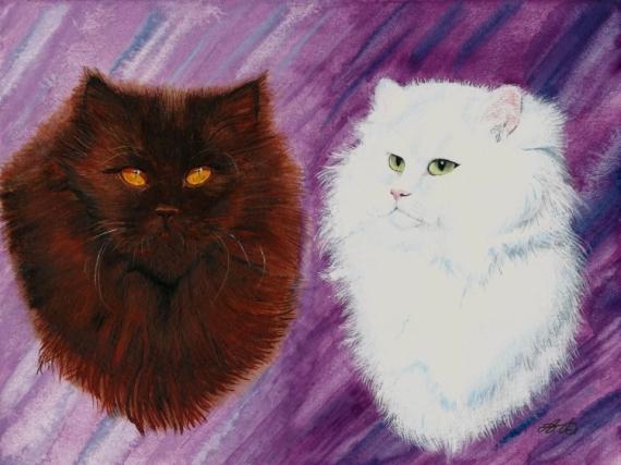 TABLEAU PEINTURE félin deux Yeux persan, race Animaux Aquarelle  - Duo de chats : petites âmes blanche et noire