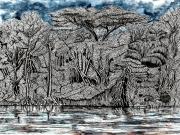 tableau paysages amazonie fleuve equateur noir : L'Amazonie équatorienne