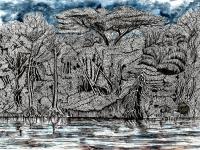 L'Amazonie équatorienne