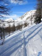 photo paysages hiver montagnes sapins neige : LIGNES BLEUES