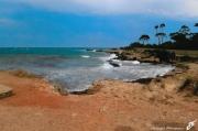 photo paysages cap d antibes mer mediterranee pins maritimes : CAP AU SUD
