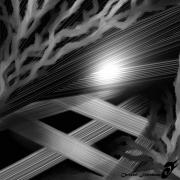 art numerique abstrait flashnuit locomotion terreur angoisses : FLASH IN THE NIGHT