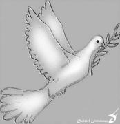 mixte autres colombe paix rameau olivier : COLOMBE DE LA PAIX