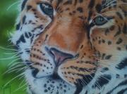 tableau animaux fauve : Ingwe