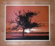 tableau paysages arbre coucher de soleil paysage : Arbre et coucher de soleil