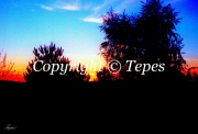 photo paysages coucher soleil colore soleil arbres : Apaisement