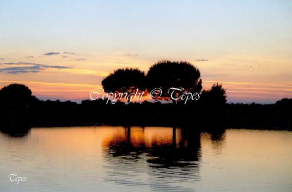 PHOTO Eau Arbres reflet soir Paysages  - Reflets