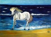 tableau animaux ocean cheval liberte voyage : Cheval en Bretagne