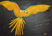 tableau animaux reve liberte hauteur amazonnie : PERROQUET PAPILLON