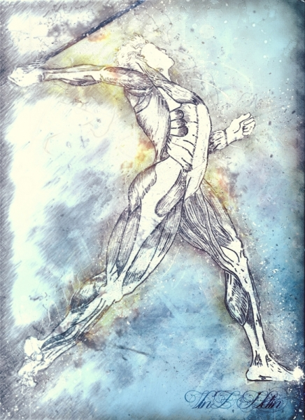 TABLEAU PEINTURE sport muscle medecale blanc Personnages  - Athlete