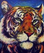 tableau animaux felin animal graphique : Tigre street-art