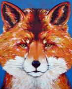 tableau animaux renard chat loup sauvage : Renard