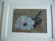 mixte fleurs fleur sur sable : fleur sur sable