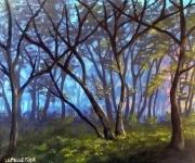 tableau paysages foret paysage lumiere arbres : A l'orée des bois
