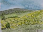 tableau paysages landes genets valon : LANDES ET GENETS