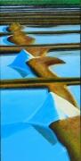 tableau paysages noirmoutier sel marais salants : L'OR BLANC