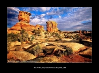 The Needles, Canyonlands National Park