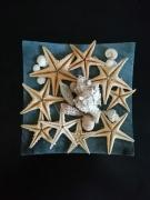 mixte marine aveyron olemps composition libre : étoiles