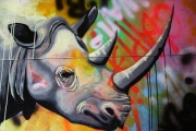 tableau animaux rhinoceros street art savane graffiti : Rhinocéros