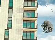art numerique animaux immeuble elephant : The elephant