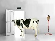 art numerique animaux vache door blood : La Vache