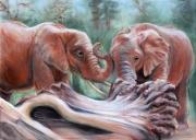 dessin animaux elephants jeu nature : jeu d'éléphants
