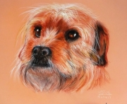 dessin animaux chien tendresse regard : Un amour de chien