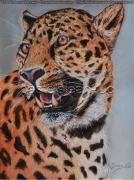 tableau animaux panthere jungle feuler crocs : Panthère feulant