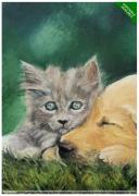 tableau animaux chien et chat mignon huile au couteau peinture animaliere : MIGNON