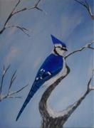 tableau animaux oiseaux bleu : GEAI BLEU HIVER