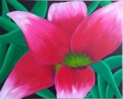 tableau fleurs : Fleur fushia