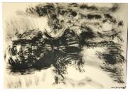 dessin paysages cheval encre : Crépuscule