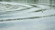 photo marine onde eau lac mouvement : La roue tourne
