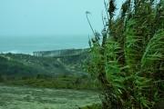 photo nature mer canne : passage en force