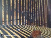 tableau scene de genre border usa mexico : Frontière (Mexique-USA)
