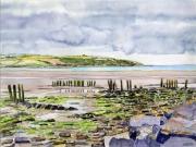 tableau paysages irlande marine maree basse mer : 2019-15 Irlande South Coast