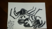 dessin animaux crabes fusain animaux eau : Crabes