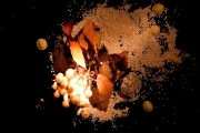 photo nature morte taboule champignon coquillage lentille : Feuille morte