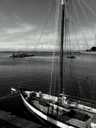photo marine bateau ocean port mer : Le Croisic