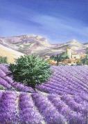 tableau paysages provence lavande paysage village : LAVANDES EN PROVENCE