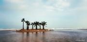 photo paysages mer ile palmiers port la nouvelle : Et au loin, une île.