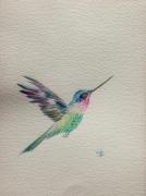 tableau animaux oiseau multicolore vol colibri : Colibri en plein vol
