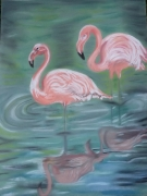 tableau animaux oiseaux eau : Flamants roses