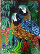tableau animaux perroquet amazon exotique plumes : Amazon