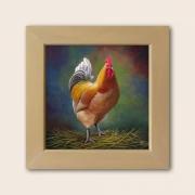 tableau animaux poule ferme volaille basse cours : Coq
