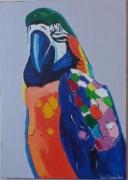 "tableau animaux : "" beautiful bird"""